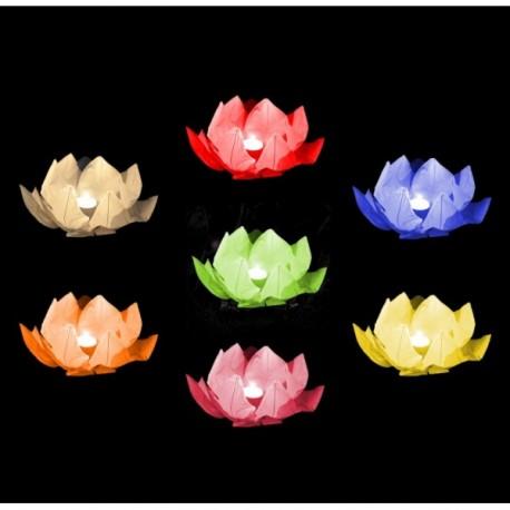 Plovoucí lucerna - leknín - mix barev 5ks